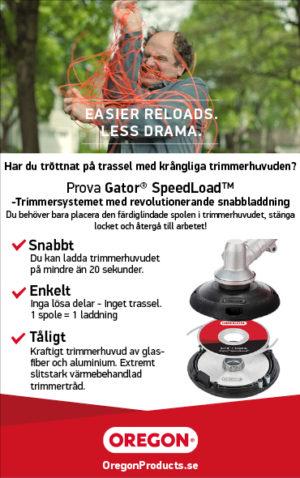 Svenska Blount.jpg